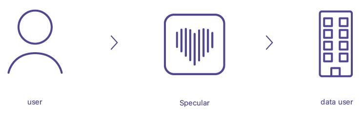 neueSpecularSystem_Zeichenfläche 1